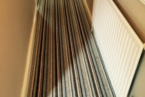 carpet04