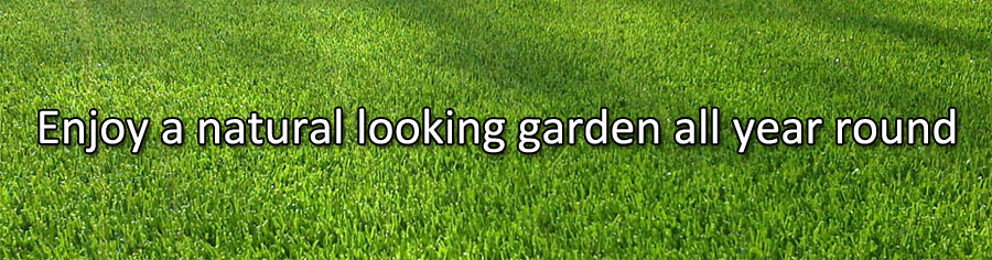 Artificial Grass All Year Round (in Great Yarmouth, Norfolk)